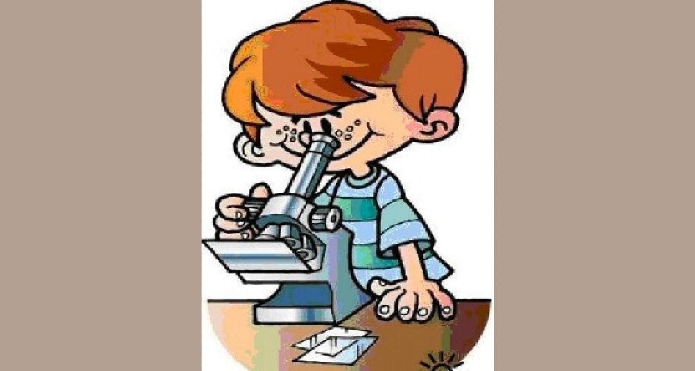 Развитие познавательно-исследовательской деятельности дошкольников через организацию детского экспериментирования