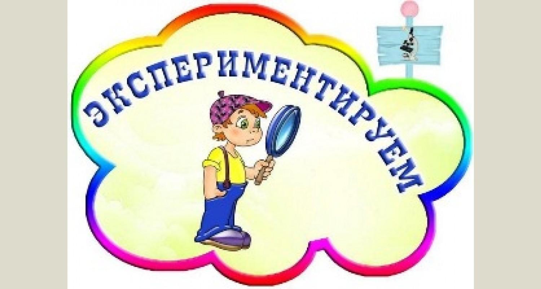 Организация и проведение экспериментов с дошкольниками