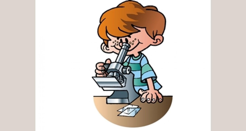 Программа дополнительного образования по познавательно – исследовательской деятельности с детьми старшего дошкольного возраста. Кружок «Хочу всё знать!»