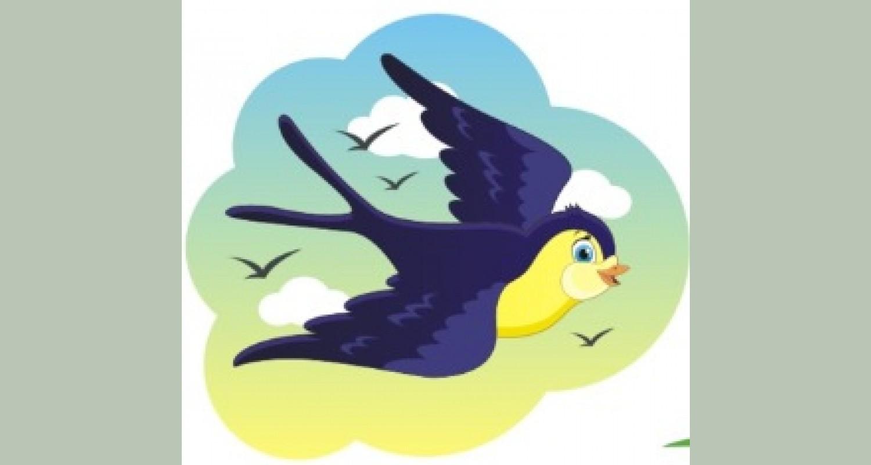 Непосредственно образовательная деятельность в старшей группе «Перелётные птицы»