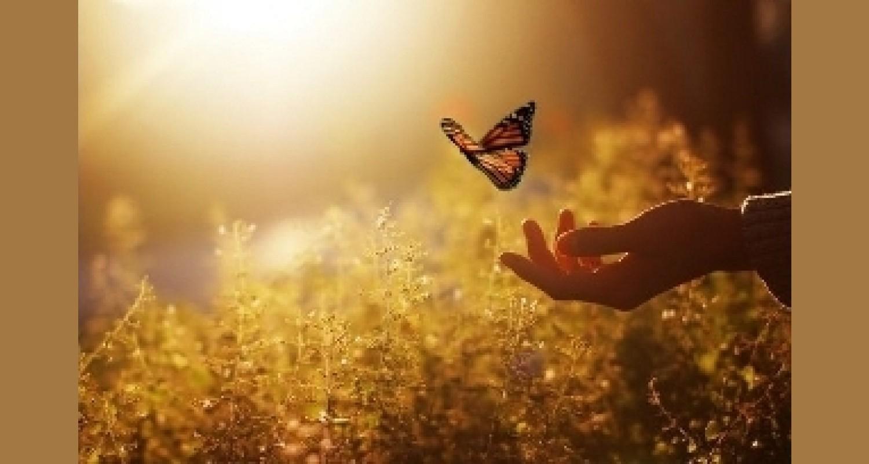 «Минуты доброты» как средство духовно – нравственного развития детей