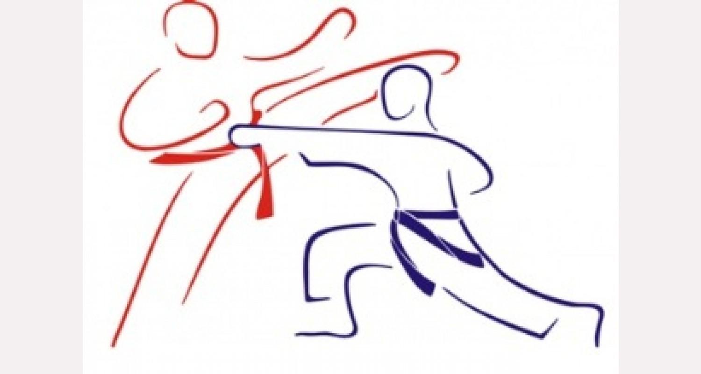 Каратэ. Спортивно-техническая и физическая подготовка (учебно-методическое пособие)