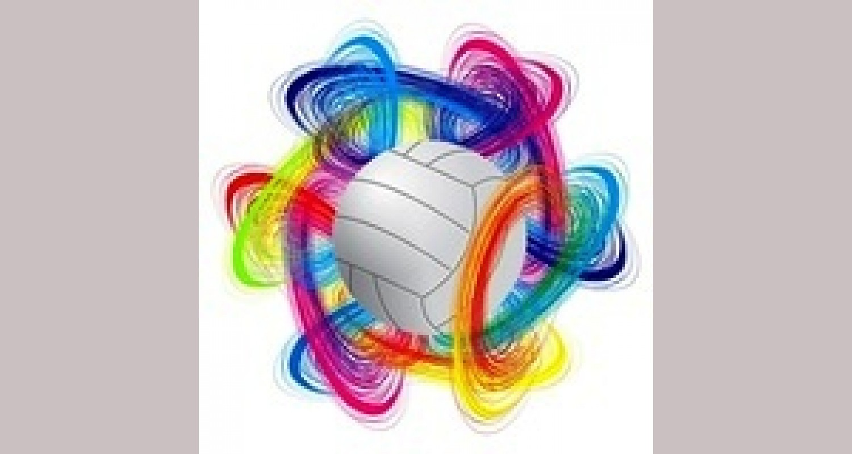 Индивидуально – дифференцированный подход к учащимся при обучении прямому нападающему удару в волейболе