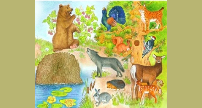 «Ознакомление детей с животным миром Прибайкалья посредством посещение детской библиотеки»