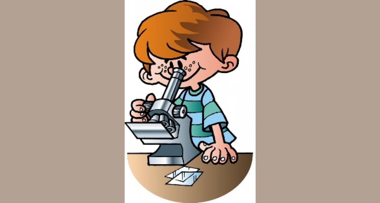 «Экологическая лаборатория», как метод развития познавательно-речевой активности дошкольников